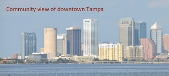 Community view of Tampa