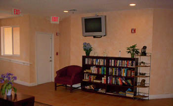 tv room and books