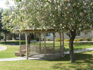 The gazebo area at Pacifica Senior Living in Paradise Valley
