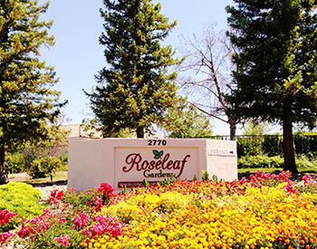 Roseleaf facility front sign