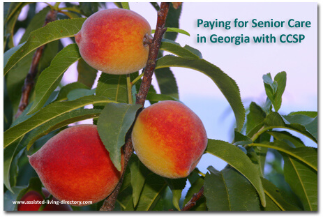 Georgia CCSP and paying for care