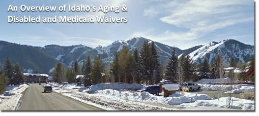 An Overview of Idaho's Medicaid Waivers