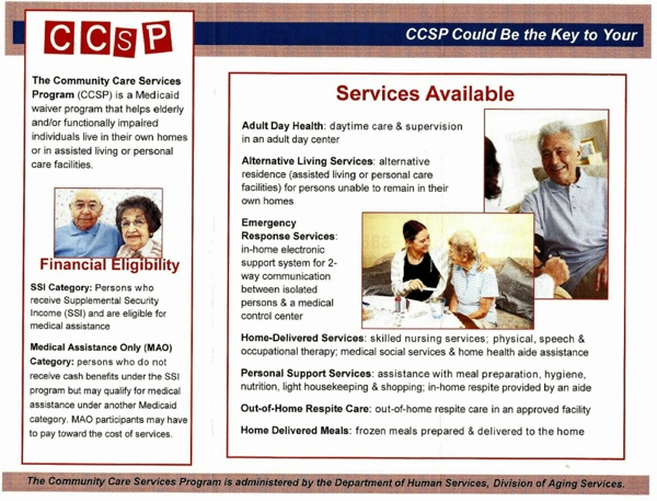 CCSP Georgia Medicaid Waiver 2